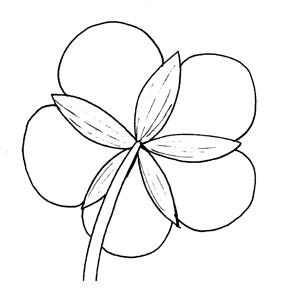 Aposepalous:|:花萼分離的:|:花萼分离的
