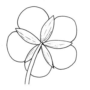 Aposepalous: :花萼分離的: :花萼分离的