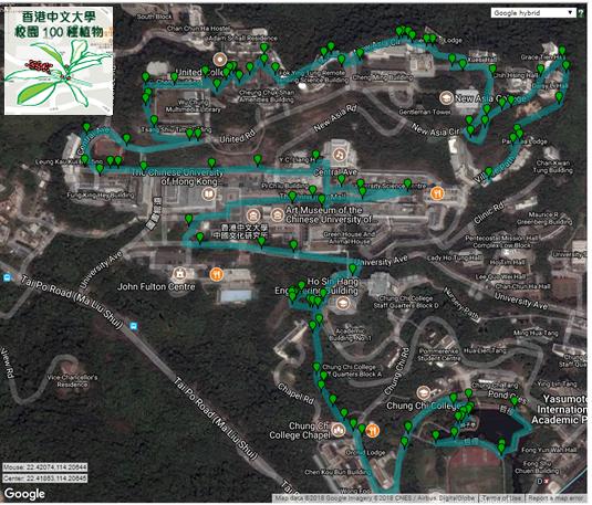 cuhk-campus-100-plants-thumb